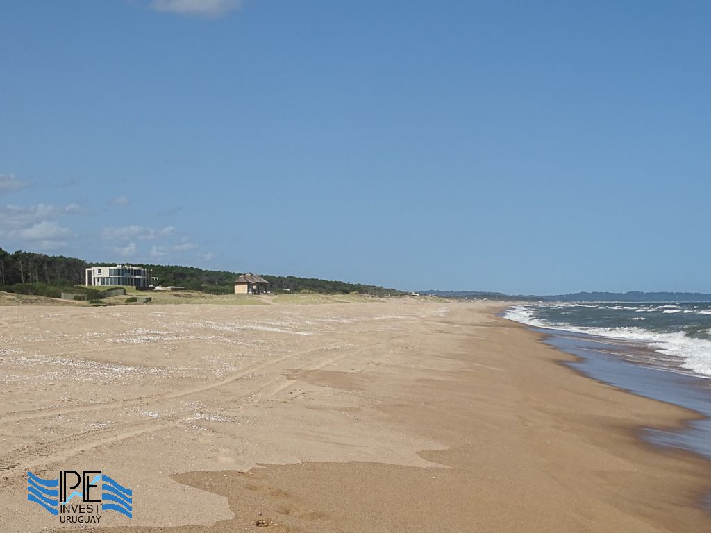 Extensive beaches along La Carolina