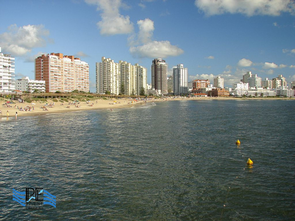 La Mansa, View of Mansa Beach in Punta del Este