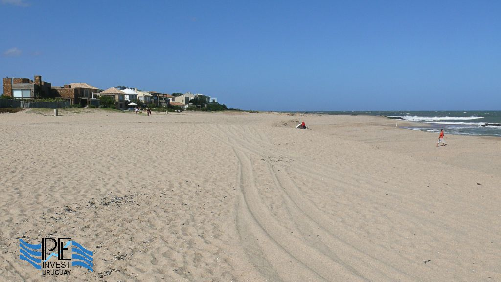 Wide and quiet beach of fine sand