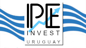 Real Estate Portal of Punta del Este City, Uruguay